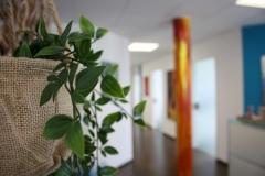 Eingangsbereich. Wir legen Wert auf eine komfortable Erfahrung für unsere Patienten.