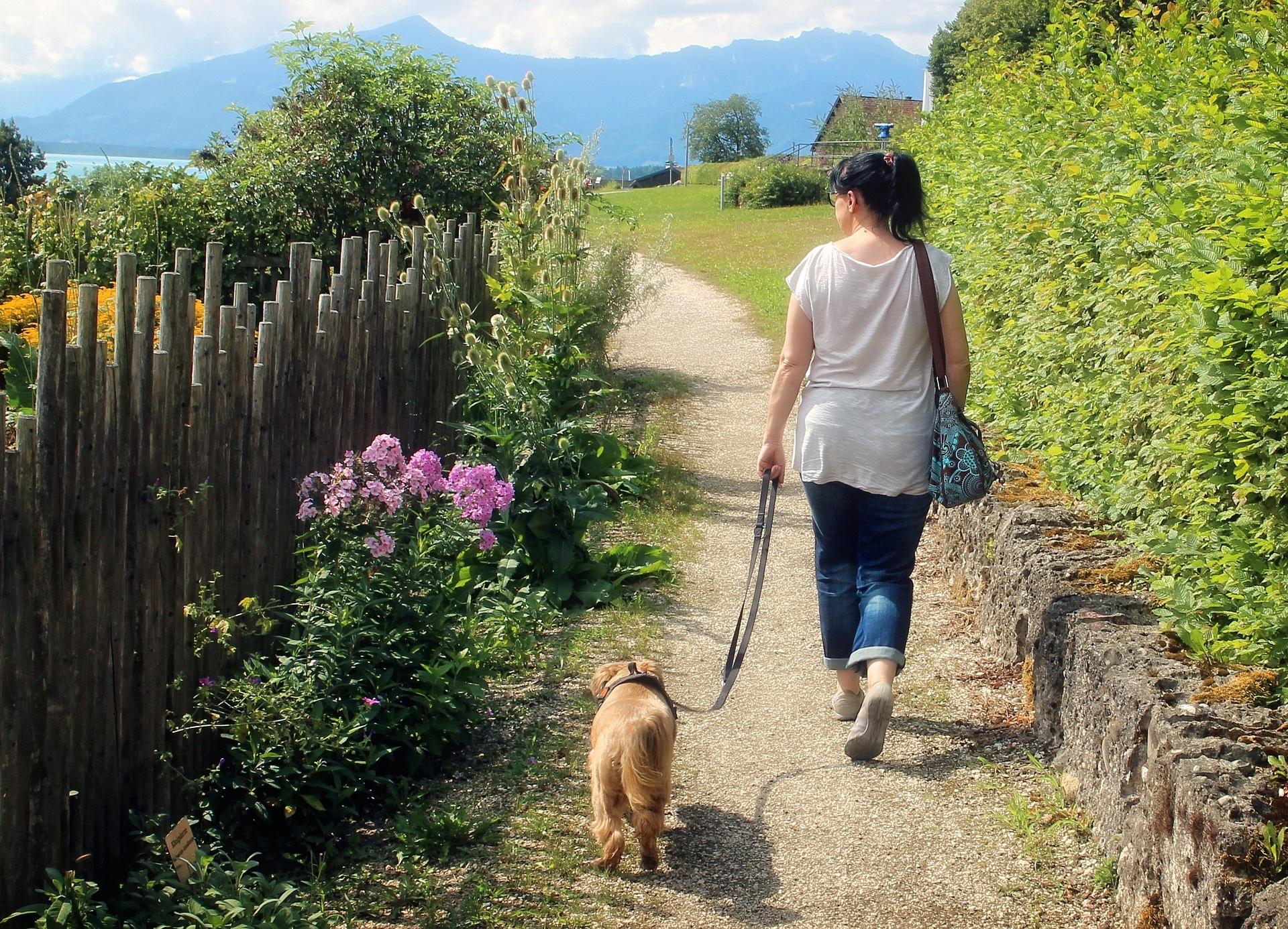 Eine Frau geht mit ihrem Hund auf dem Land gassi
